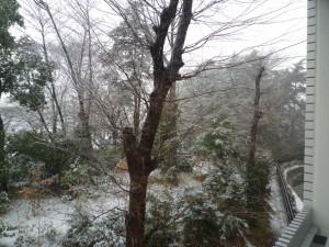 窓外の雪景色
