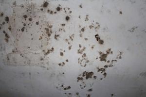 手榴弾の跡