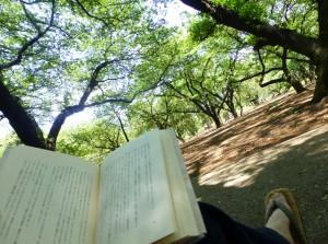 御苑で読書