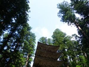 木々にとけ込む五重塔